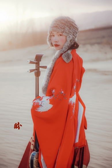 Mind dynasty overcoat for colder period
